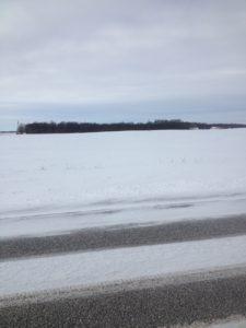 picture of barren farm field in winter