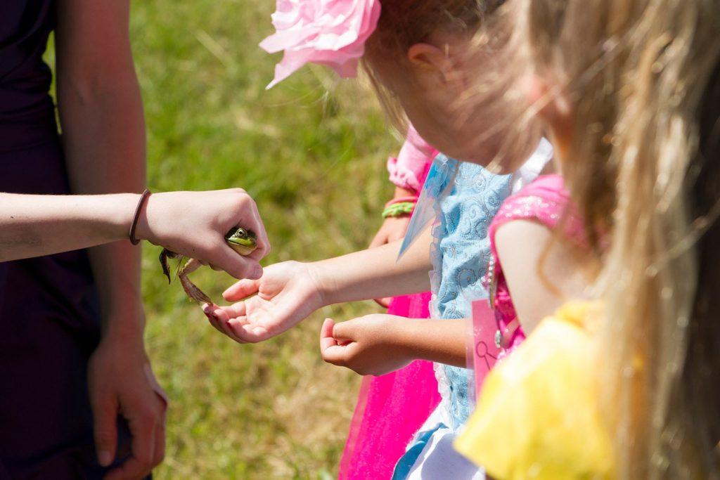 Photo of Nature Princess campers looking at a frog