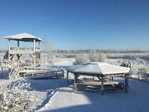 Winter at Woodland Dunes