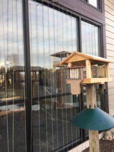 photo of zen curtains by bird feeder
