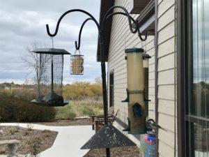 photo of bird feeder station